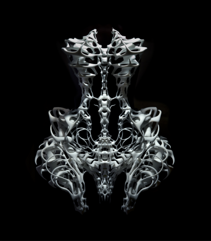 Iris van Herpen, 3D Fashion, What's your Challenge