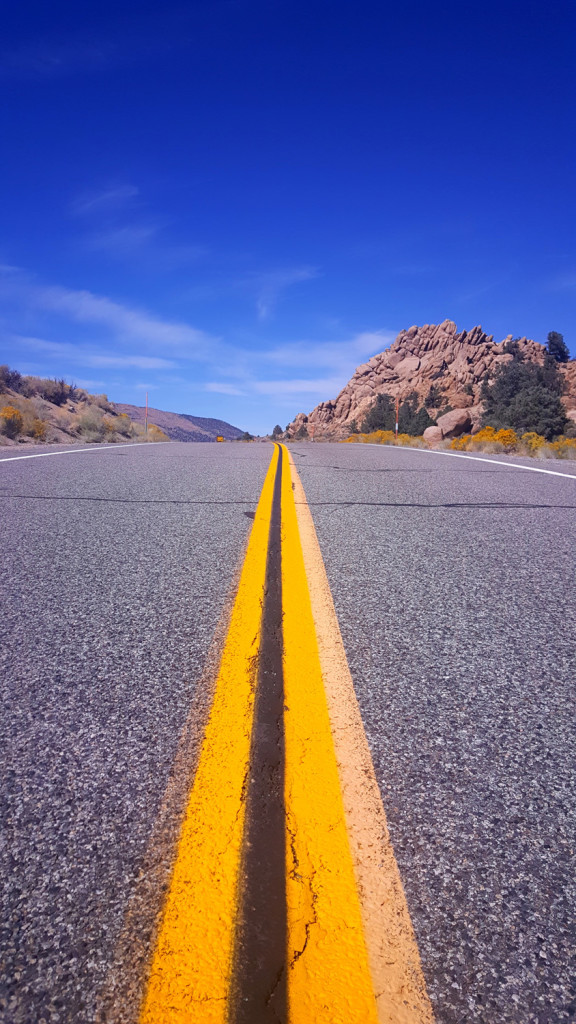 The road ahead Death Valley Nevada - What's Your Challenge